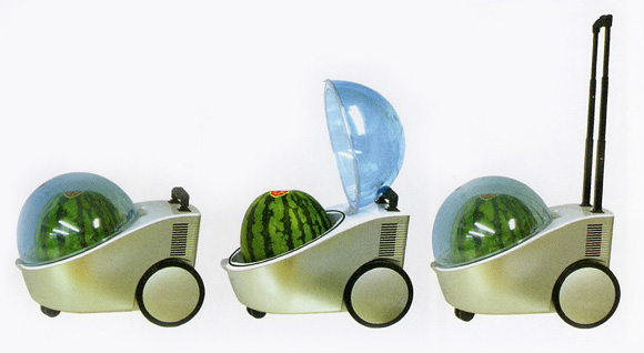 Portable Watermelon Cooler a Heater